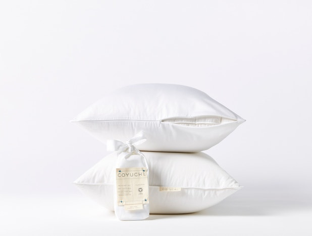Down Pillows + Protectors Set