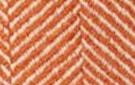 Tangerine w/ Ivory