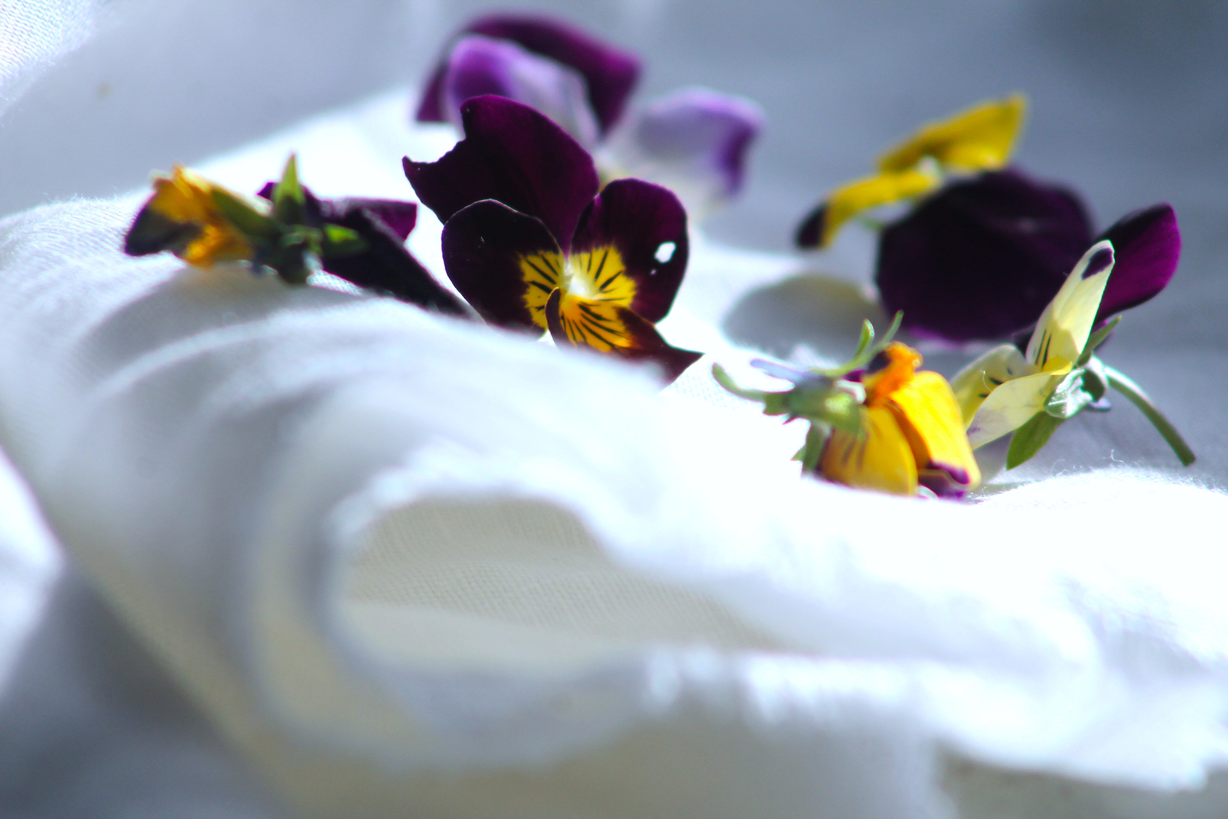 yellow pansies and purple violets on white linen
