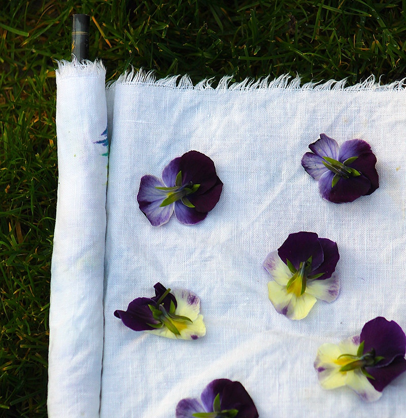 pansies and violets laid out on white linen cloth
