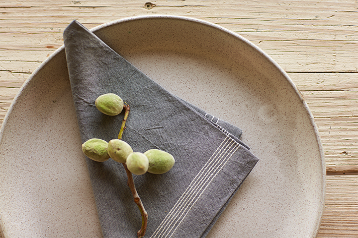 Simple Stitch Chambray Napkins
