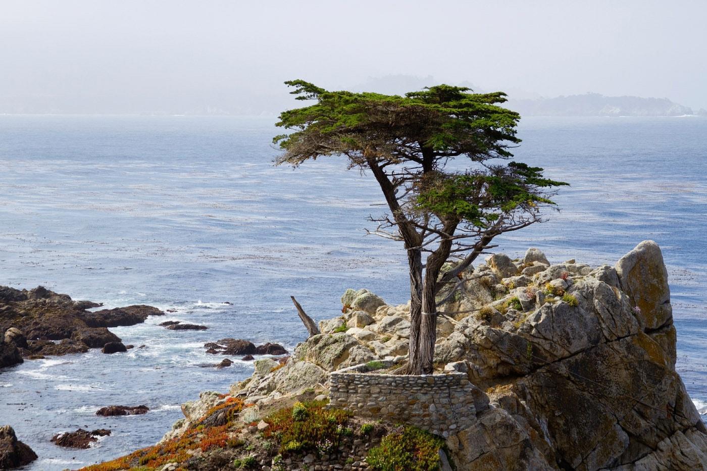 Lone Pine, Carmel, California