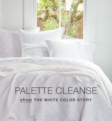Palette-Cleanse