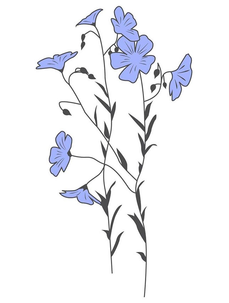 illustration of flax plant