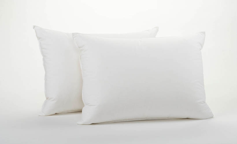 Coyuchi Down Pillows